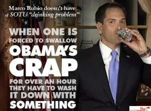 rubio swallow