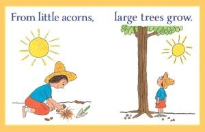 proverbs acorn