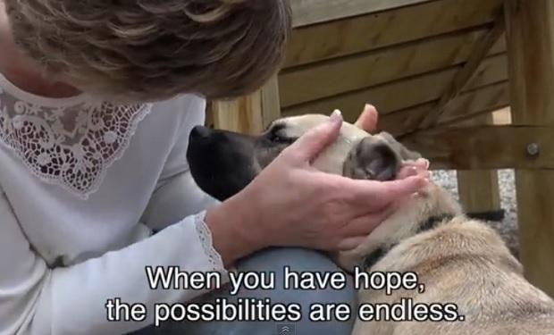 Heartfelt Doggie Story
